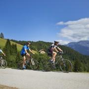 kolesarji-na-panoramski-cesti-2